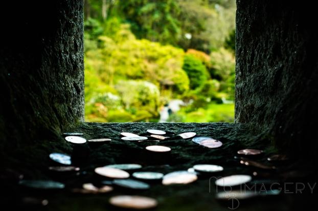 Through Darkness Comes Light, Japanese Garden