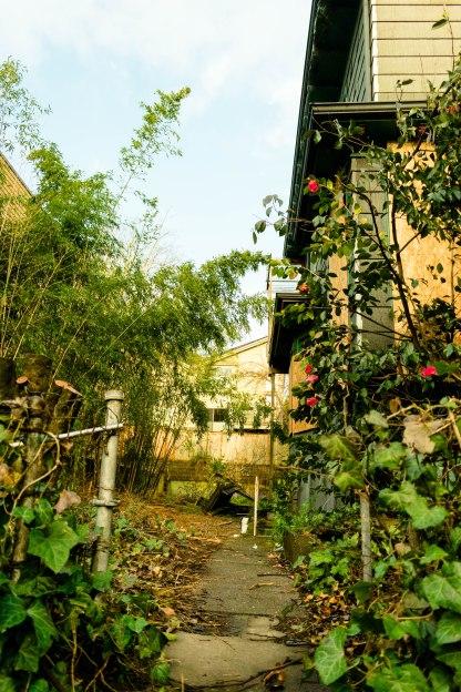 Abandoned House- Side